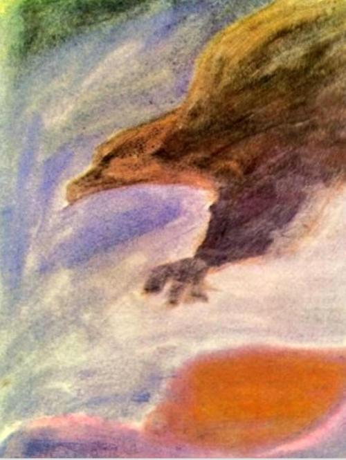adelaar 11
