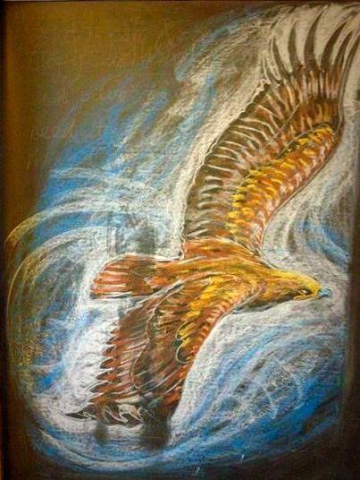 adelaar-13