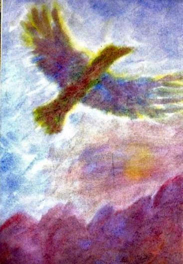 adelaar 2