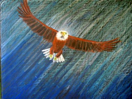 adelaar 6.jpg