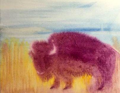 buffel 1