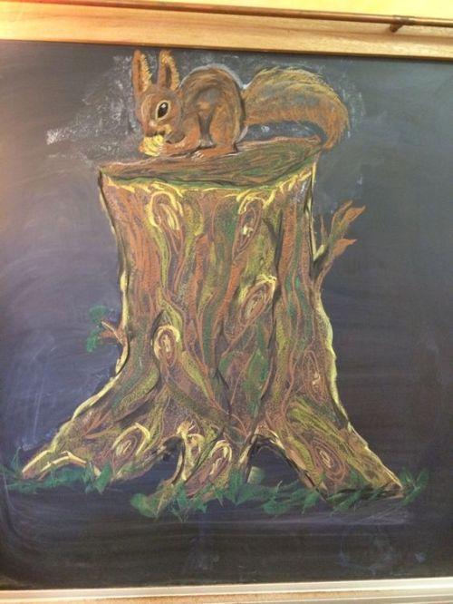 eekhoorn 2